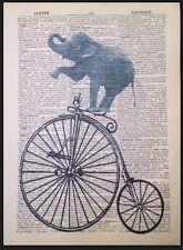 Vintage Elefante Penny Farthing impresión Diccionario página Pared Arte Foto Bicicleta