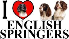 I LOVE ENGLISH SPRINGERS Car Sticker By Starprint - Ft. the English Springer
