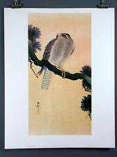Koson, Falcon on Branch Japanese Wood Block Print, 22x28 Poster Shoson Sho-son
