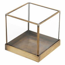 5 inch Brass Frame and Glass Display Case, Decorative Cube Plant Terrarium