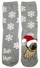 LADIES BAH HUMBUG HUM PUG CHRISTMAS NOVELTY SOCKS UK 4-8 EUR 37-42 USA 6-10