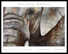 Patricia Hunter Elephant Face Poster Bild Kunstdruck & Alurahmen schwarz 56x71cm