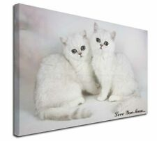 More details for exotic white kittens 'love you mum' x-large 30