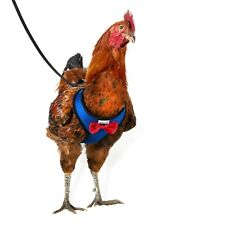 Yesito Chicken Harness Hen Size With 6ft Matching Leash – Adjustable, Resilie.