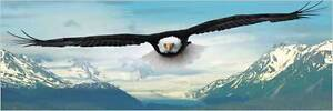 """Jigsaw puzzle Animal Bird Eagle 750 piece panographic 36"""" NEW made in the USA"""