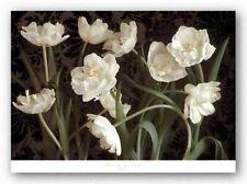 FLORAL ART PRINT Bountiful Tulips Donna Geissler