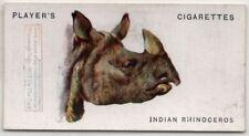 Indian Rhinoceros 85+ Y/O Ad Trade Card