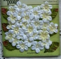 Velvet Mini Forget-Me-Nots WHITE 40 flowers 22mm -Petaloo Velvet W all back
