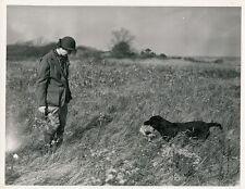 Concours Chien Chasse 1943 - Mr J. S. William Labrador USA - GF 390