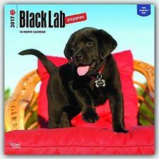 BLACK LAB LABRADOR RETREIVER PUPPIES 2017 UK WALL CALENDAR + FREE UK POSTAGE