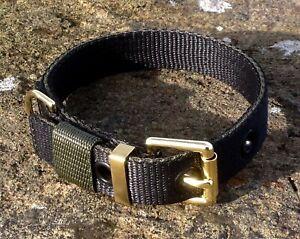 TC2 Strong Webbing Dog Collar Terrier/Bull Terrier/Spaniel/Labrador/Collie