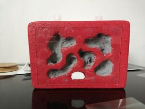 AAC Live Ant Formicarium Ytong Nest With Hydration Chamber + Glass Lid RED