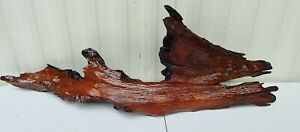 """Beautiful Finished Driftwood Art Taxidermy Cabin Beach Lake House Orchids 37.5"""""""