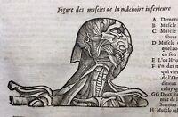 Medicina 1614 Ambrose Anatomia Viso Ganascia Chirurgia Rara Stampa