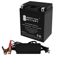 Mighty Max YTX5L-BS Battery for Honda TRX90 ATV 12V 1AMP CHARGER