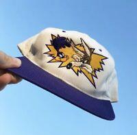 Vtg '94 Looney Tunes Wile E. Coyote & The Roadrunner Snapback Hat