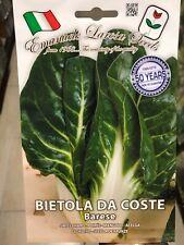 1000 semi-Begonia semperflorens F2-Bianco Fiore Verde a foglie CERA Begonia