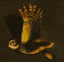 LITTLE OWL : ORIGINAL OIL PAINTING : Falconry Falcon Bird Art by David Andrews