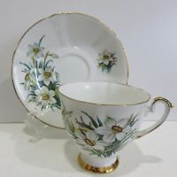 Royal London Bone China Teacup and Saucer, PAPER WHITES
