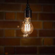 Globe 60W with Filament Light Bulbs