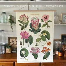 70cm Vintage Cavallini Botanical Tropical Plants Poster Print Linen Paper Art