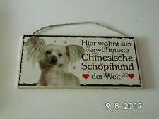 Türschild Chinesische Schopfhund, Tierschild Hund aus Holz, Holzschild