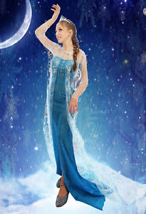 Womens Frozen Princess Elsa Costume Cosplay Party Gown Fancy Dress Outfit 8-16