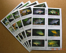 Package of ALL Supplements for AQUALOG S.A. Cichlids 2 (Peel Back Stickers)