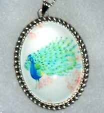 "Peacock  Pendant on a 20"" silver plate chain ""408""  peacock necklace !"