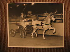 Champion Welsh Mountain Pony Dancing Cloud & Susan Saltonstall Orig Horse Photo