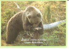 Postcard: Finland - The brown bear