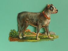 Antique die Cut Pitbull dog leather collar Staffordshire Bull terrier bully dog