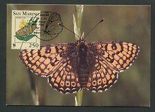 SAN MARINO MK FAUNA SCHMETTERLINGE BUTTERFLIES CARTE MAXIMUM CARD MC CM d6269