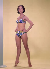 NANCY KWAN SUPER SEXY PUBLICITY PHOTO FOR HONEYMOON HOTEL (1964)