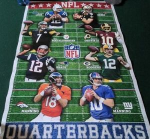 "2013 NFL QUARTERBACKS POSTER  22"" X 34""  TRENDS   BRADY, MANNING, BREES #2423"