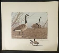 WYOMING #1 1985 STATE DUCK STAMP PRINT CANADA GOOSE by Robert Kusserow Color Rem