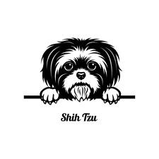 Peeking Shih Tzu Dog Clipart Vector Clip Art Graphics Dxf Svg Eps Ai Png Pdf