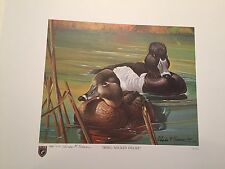 ILLINOIS #15 1989 State Duck Stamp Print RING NECKED DUCKS plus actual stamp MNH