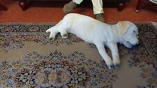 Dolls House Miniatures 1/12th Scale Ben the Sleepy Labrador Dog 5556 New *