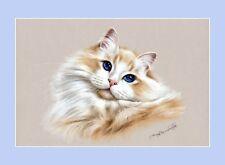Ragdoll Cat Beauty Print by Irina Garmashova