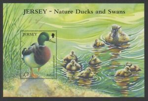 Jersey - 2004, Ducks & Swans sheet - MNH - SG MS1142