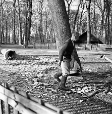 SUISSE c. 1959 - Bûcheron Abbatage Arbre Sauvabelin - Négatif 6 x 6 - Sui 154