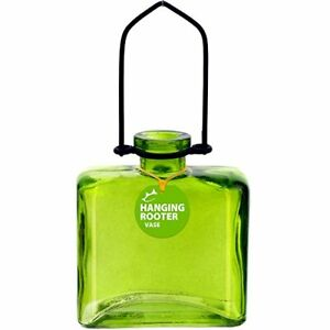Couronne - Hanging Rectangle Rooter Vase - Lime