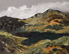 Welsh Mountains ORIGINAL LANDSCAPE PAINTING Snowdonia Steve Greaves Art Kyffin