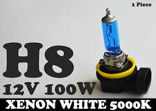 1x H8 12V 100W Xenon White 5000k Halogen Blue Car Headlight Lamp Globes Bulb HID