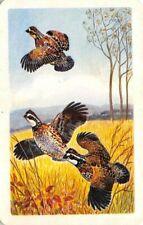 3 Birds Single Swap Playing Card Vintage Blank Back