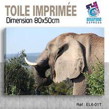 80x50cm - TOILE IMPRIMÉE- TABLEAU  POSTER DECO -ELEPHANT FELIN - EL6-01T