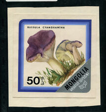 Mongolia 1978 Mushrooms Scott 1005 Preliminary Artwork Watercolor on PosterBoard