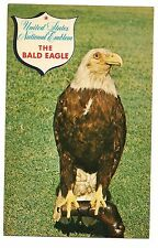 United States National Emblem THE BALD EAGLE Bird of Prey Minnesota Postcard