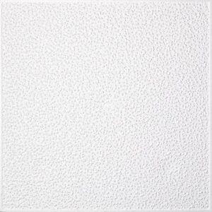 22m² Styroporplatten Deckenplatten Struktur (2,68 €/m²)